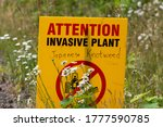 Attention Sign For Invasive...