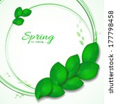 green leaves abstract...   Shutterstock .eps vector #177798458