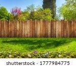 Garden Backyard With Grass Lawn ...