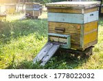 Bee Apiary With Beehives. A...