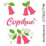 copihue  chilean bellflower ...   Shutterstock .eps vector #1778227748