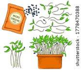 vector micro salad growing in a ... | Shutterstock .eps vector #1778470388