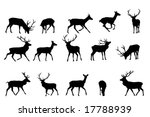 red deer silhouette vector... | Shutterstock .eps vector #17788939