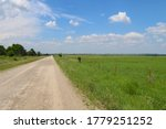 A Flat Rural Marshland Scene...