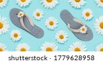 Camomile Flower And Flip Flops...