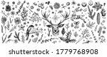 winter forest hand drawn vector.... | Shutterstock .eps vector #1779768908