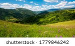 Summer Landscape In Mountains....