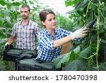 Successful Female Farmer Hand...