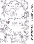 vector drawing floral vintage... | Shutterstock .eps vector #1780496408