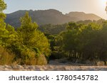 Mediterranean Landscape In The...