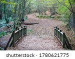 Wooden Bridge In The Autumn...
