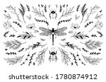 trendy vector insects and...   Shutterstock .eps vector #1780874912