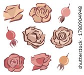 rosehip and roses vector set.... | Shutterstock .eps vector #1780904948