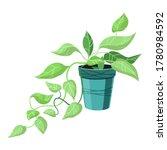 a single indoor climbing plant... | Shutterstock .eps vector #1780984592