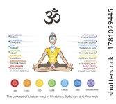 chakras system of human body  ...   Shutterstock .eps vector #1781029445