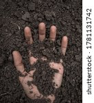 Hand Buried In The Soil.