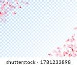 japanese cherry petals on... | Shutterstock .eps vector #1781233898
