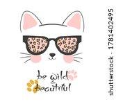 Little Cute Cat In Sunglasses...
