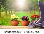 garden and flowers  | Shutterstock . vector #178160756