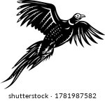 Ring Necked Pheasant Flying...