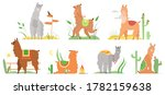 cartoon lama flat vector... | Shutterstock .eps vector #1782159638