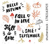 hand drawn vector autumn... | Shutterstock .eps vector #1782163925
