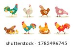 Various Cute Chickens Flat Ico...