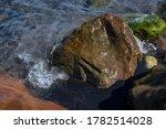 Sea Water Tide On Mossy Wet...