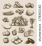 hand drawn vegetables set | Shutterstock .eps vector #178302182