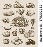 Hand Drawn Vegetables Set