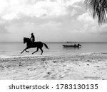 Man Riding A Horse Along The...