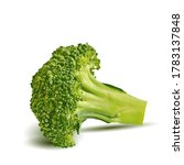 broccoli low poly. fresh ...   Shutterstock .eps vector #1783137848