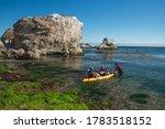 Shell Beach  California Usa ...