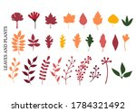 autumn leaves and plants ... | Shutterstock .eps vector #1784321492