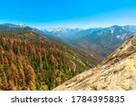 Panorama Of Sequoia National...