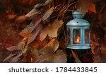 Beautiful Fall Nature...