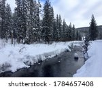 Snowy day in Custer Gallatin National Forest, West Yellowstone, Montana, United States