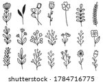 collection forest fern...   Shutterstock .eps vector #1784716775