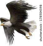 vector illustration of american ... | Shutterstock .eps vector #178504598