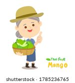 thai farmer have mango thai...   Shutterstock .eps vector #1785236765