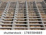 Closeup Cattle Grid Pattern  I...