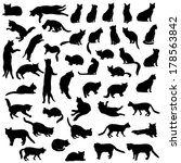 Stock vector cats silhouette set kitten in different pose 178563842
