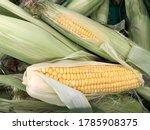 macro photo fresh corns... | Shutterstock . vector #1785908375