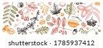 botanical autumn elements... | Shutterstock .eps vector #1785937412