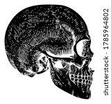 a skull graphic. original...   Shutterstock . vector #1785964802