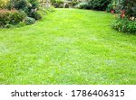 green lawn background in the... | Shutterstock . vector #1786406315