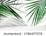 Small photo of Cosmetics product advertising backdrop. Exhibition white podium on a white background with palm leaves and shadows. Empty pedestal to display product packaging. Showcase mockup.