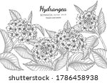 hydrangea flower and leaf hand... | Shutterstock .eps vector #1786458938