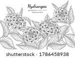 hydrangea flower and leaf hand... | Shutterstock .eps vector #1786458938