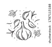 falling garlic with herbs and...   Shutterstock .eps vector #1787115188